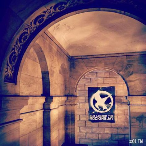 552x552xOur-Leader-the-Mockingjay.jpg.pagespeed.ic.LhTpE3F-hT