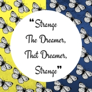 Strange The Dreamer Graphic Design